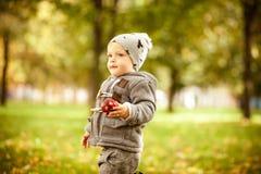 秋天男孩少许公园 库存图片