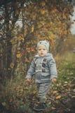 秋天男孩少许公园 图库摄影