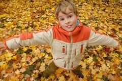 秋天男孩留下公园纵向 免版税库存照片