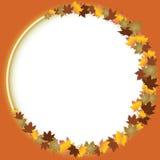 秋天留下在白色的边界 免版税库存图片