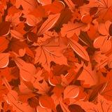 秋天留下无缝的样式 免版税库存图片