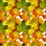 秋天留下无缝的照片背景 五颜六色的秋天纹理样式 免版税图库摄影