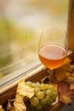 秋天白葡萄酒 库存图片