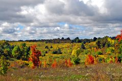 秋天的五颜六色的草甸 库存照片