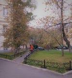 秋天的俄国庭院 库存图片