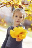 秋天的俏丽的小孩女孩 库存照片