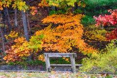 秋天的克利夫兰Metroparks 库存照片