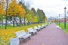 秋天的公园 库存图片