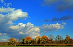 秋天的公园 库存照片