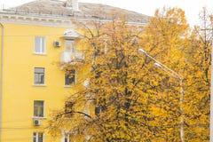 秋天的典型的斯大林ampir样式房子,围拢由与橙色叶子的树,街灯 图库摄影