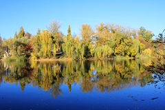 秋天的反射在水中 库存图片