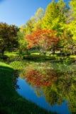 秋天的吉布斯庭院乔治亚 免版税库存图片