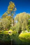 秋天的吉布斯庭院乔治亚 库存图片