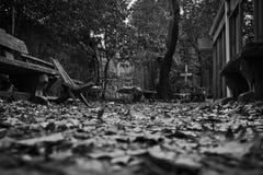 秋天的后院 免版税库存照片