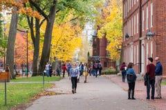 秋天的哈佛校园 免版税图库摄影