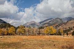 秋天的山草甸 库存图片