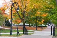 秋天的州立学院校园 库存照片