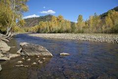 秋天的德洛丽丝河 库存照片