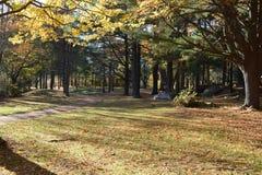 秋天的新英格兰 库存图片