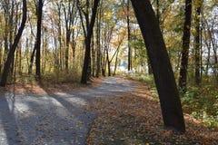 秋天的新英格兰 免版税图库摄影