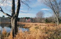 秋天的新英格兰 图库摄影