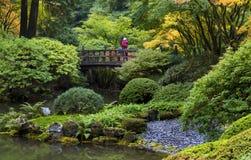 秋天的日本庭院 免版税库存图片