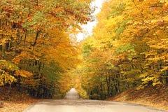 秋天的明亮的颜色 库存照片