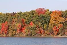 秋天的明亮的颜色 库存图片