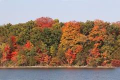 秋天的明亮的颜色 免版税库存照片
