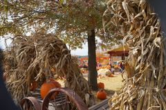 秋天的标志在农场的 免版税库存照片