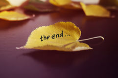 秋天的概念 免版税库存照片