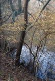 秋天的池塘 免版税库存图片