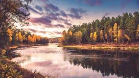 秋天的河岸 免版税库存图片