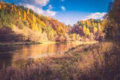 秋天的河岸 库存图片
