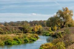 秋天的河,在河复杂样式的海藻 图库摄影