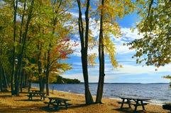 秋天的湖 在明亮的红色,黄色树银行  库存图片