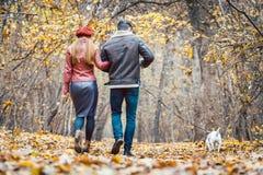 秋天的漫步与他们的狗的妇女和人在公园 免版税库存照片