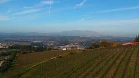 秋天的葡萄园在葡萄收获好日子,空中录影以后 股票录像