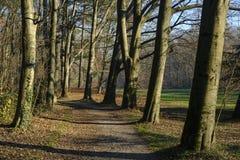 秋天的蒙扎公园意大利 免版税库存照片