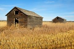 秋天的被放弃的老粮仓 图库摄影