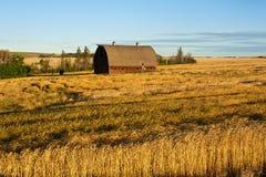 秋天的被放弃的谷仓 库存图片