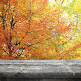 秋天的野餐桌 免版税库存照片
