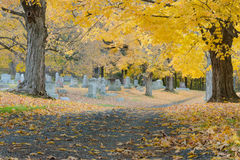 秋天的阿尔巴尼农村公墓 免版税库存图片