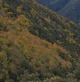 秋天的颜色出现在山, corollarizing它 免版税库存图片