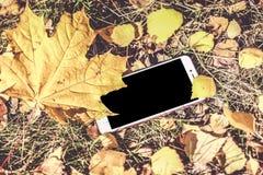 秋天的颜色 有一个地方的黑电话您的商标的 免版税库存图片