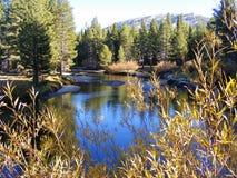 秋天的JENKS湖 库存照片