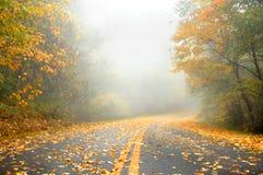 秋天离开的车行道 免版税图库摄影