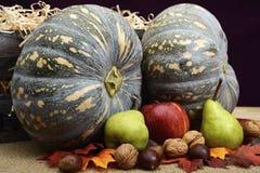 秋天秋天收获南瓜、坚果和果子 图库摄影