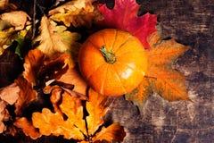 秋天秋天背景用南瓜和金黄叶子在铁锈 库存照片