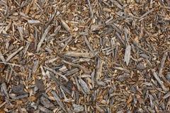 秋天秋天自然背景 抽象织地不很细地面 免版税库存图片